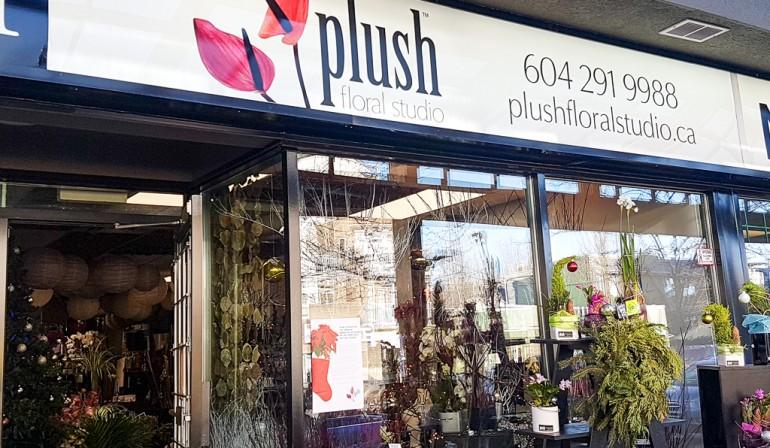 Plush Floral Studio