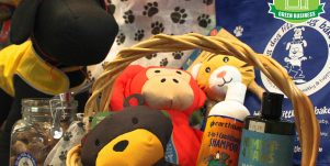 Sustainable pet toys, treats, and items at Big Dog Little Dog Bakery
